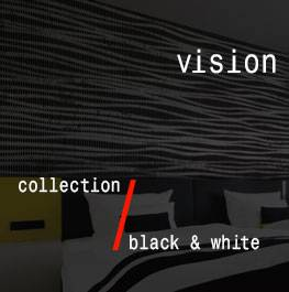 black & white / vision