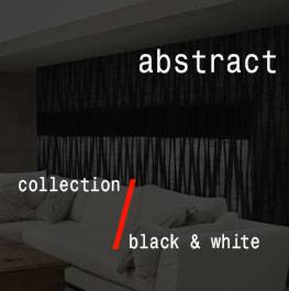 black & white / abstract
