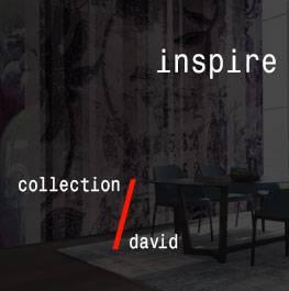 david / inspire