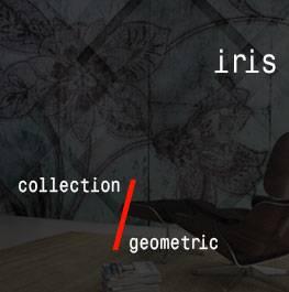 geometric / iris