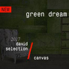 canvas / green dream