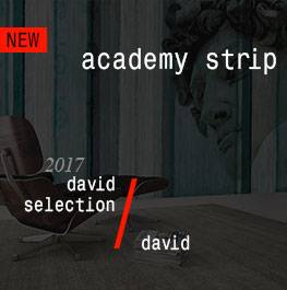 david / academy strip