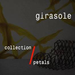 petals / girasole