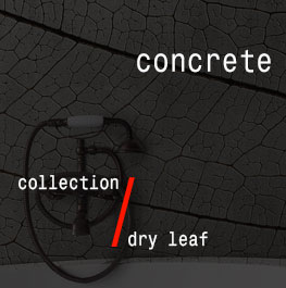 concrete / dry leaf
