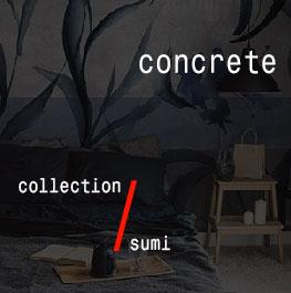 concrete / sumi