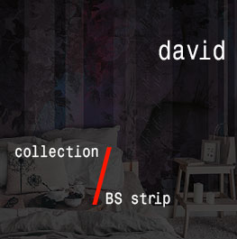 david / BS strip