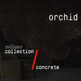 concrete / orchid