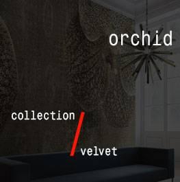 velvet / orchid