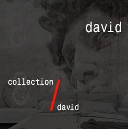 david / david