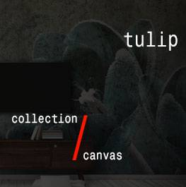 canvas / tulip