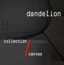 canvas / dandelion