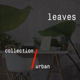 urban / leaves