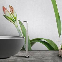 petals / daffodil
