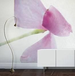 petals / lathy