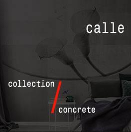 concrete / calle
