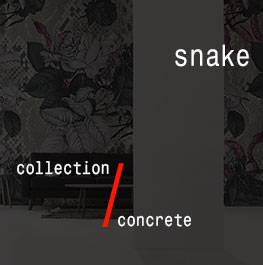 concrete / snake