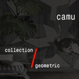 geometric / camu