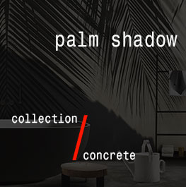 concrete / palm shadow