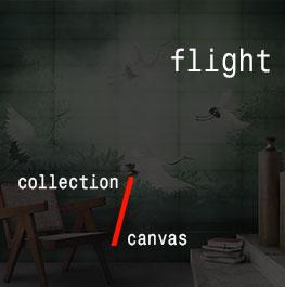 canvas / flight