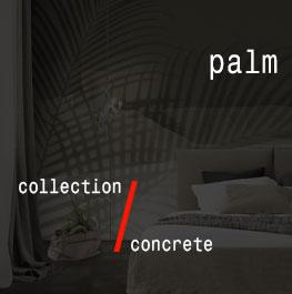 concrete / palm